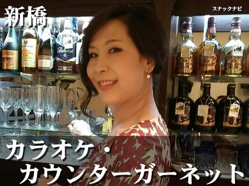 カラオケ・カウンターガーネット(新橋)